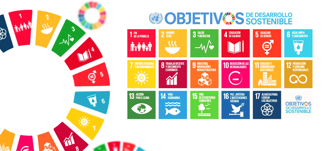 S-SDG-Poster_A4-1024x724-1024x724