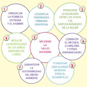 objetivos milenio - smlm 2014 web